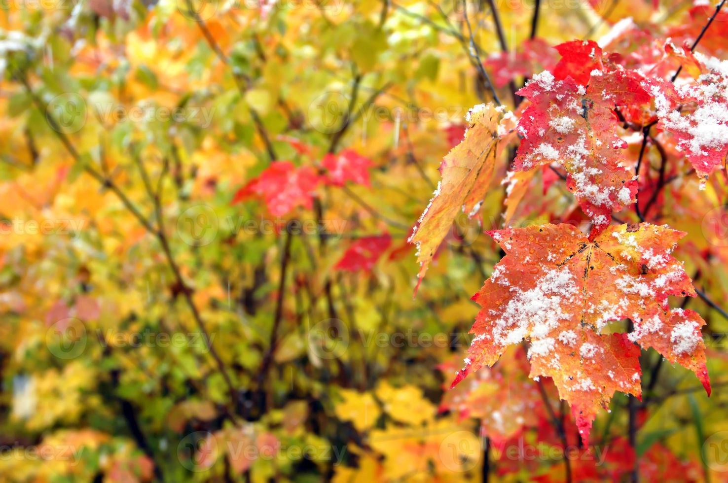 achtergrond begin van de winter foto