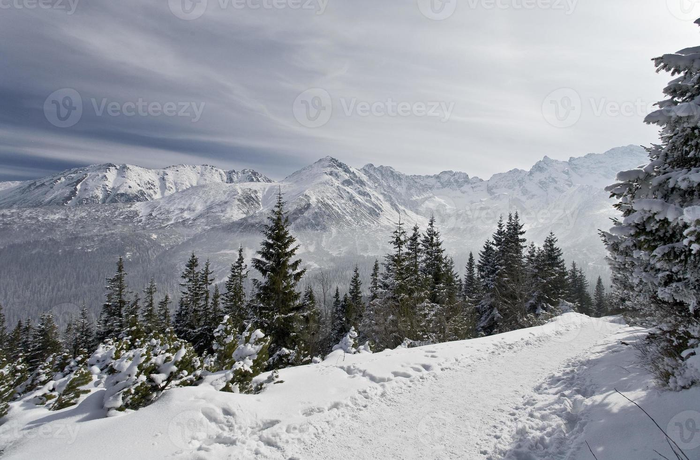 Tatra gebergte in de winter foto