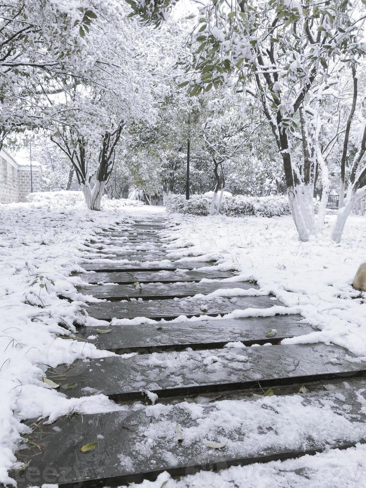 winter weg in een bos foto