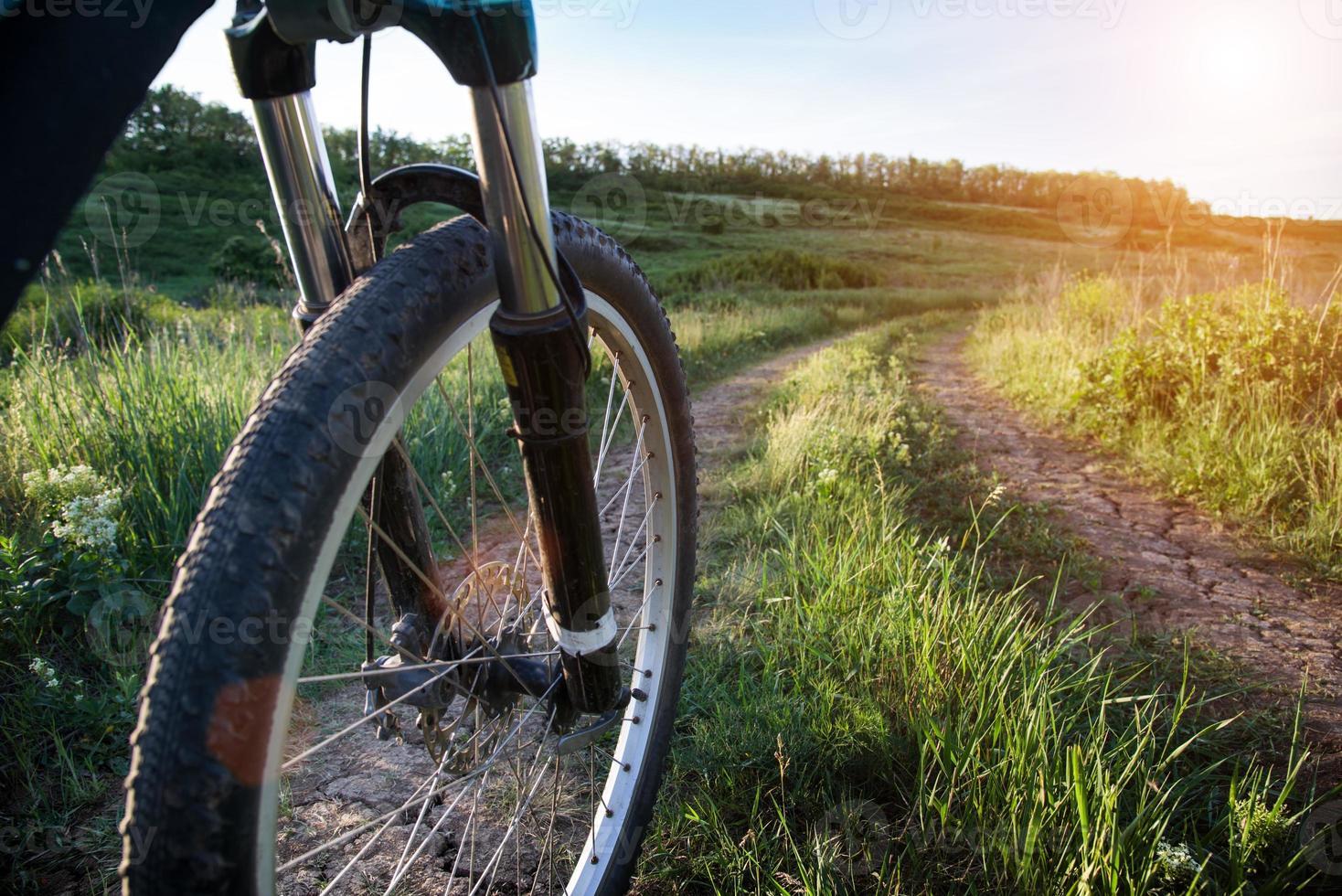 fietsen in de zomer foto