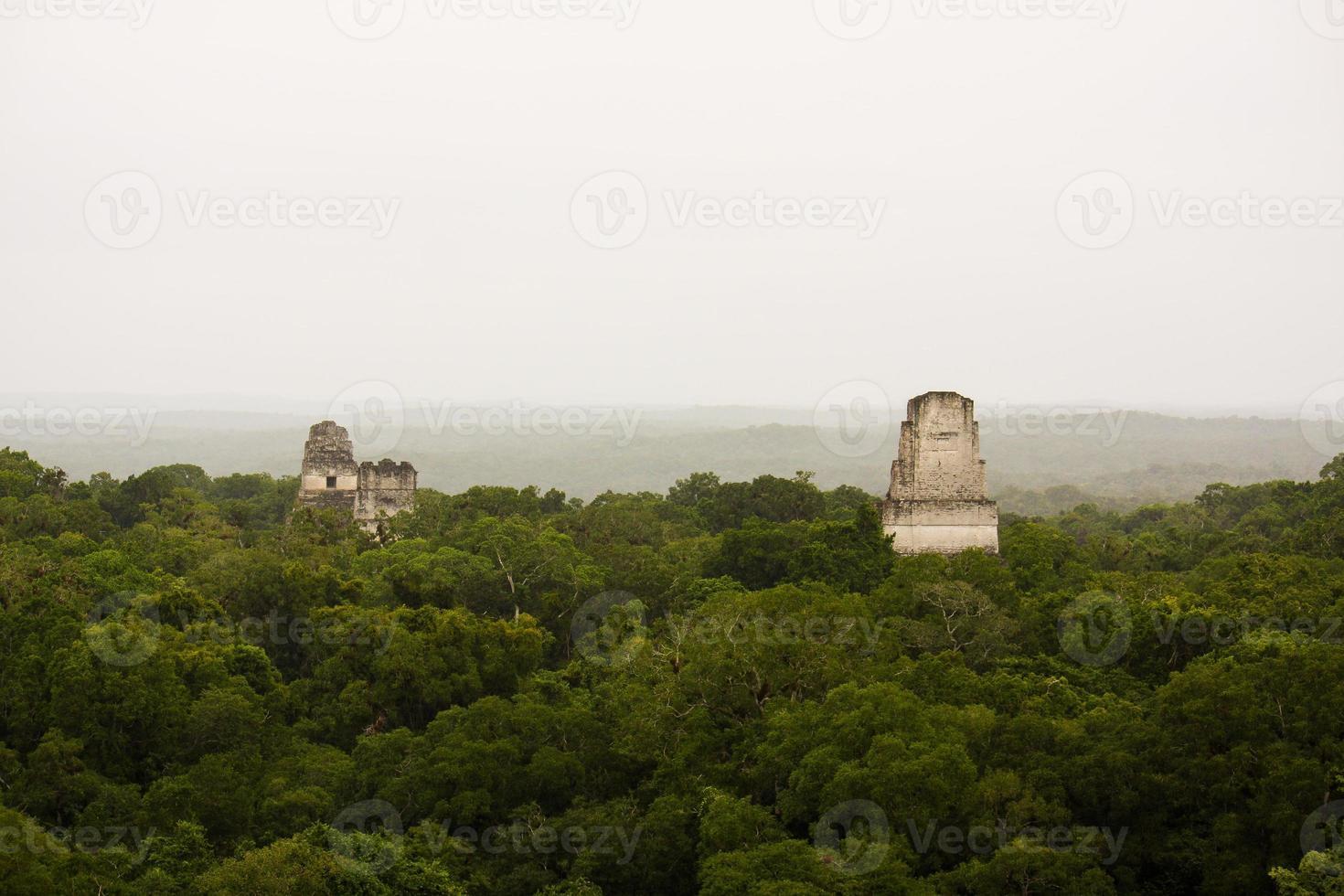 Maya piramides in de jungle of selva, tikal foto