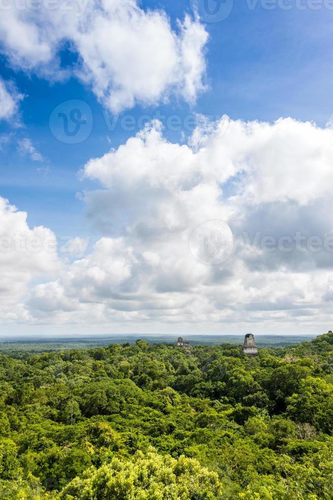 panoramisch uitzicht op regenwoud en Maya-ruïnes. tikal, guatemala. foto