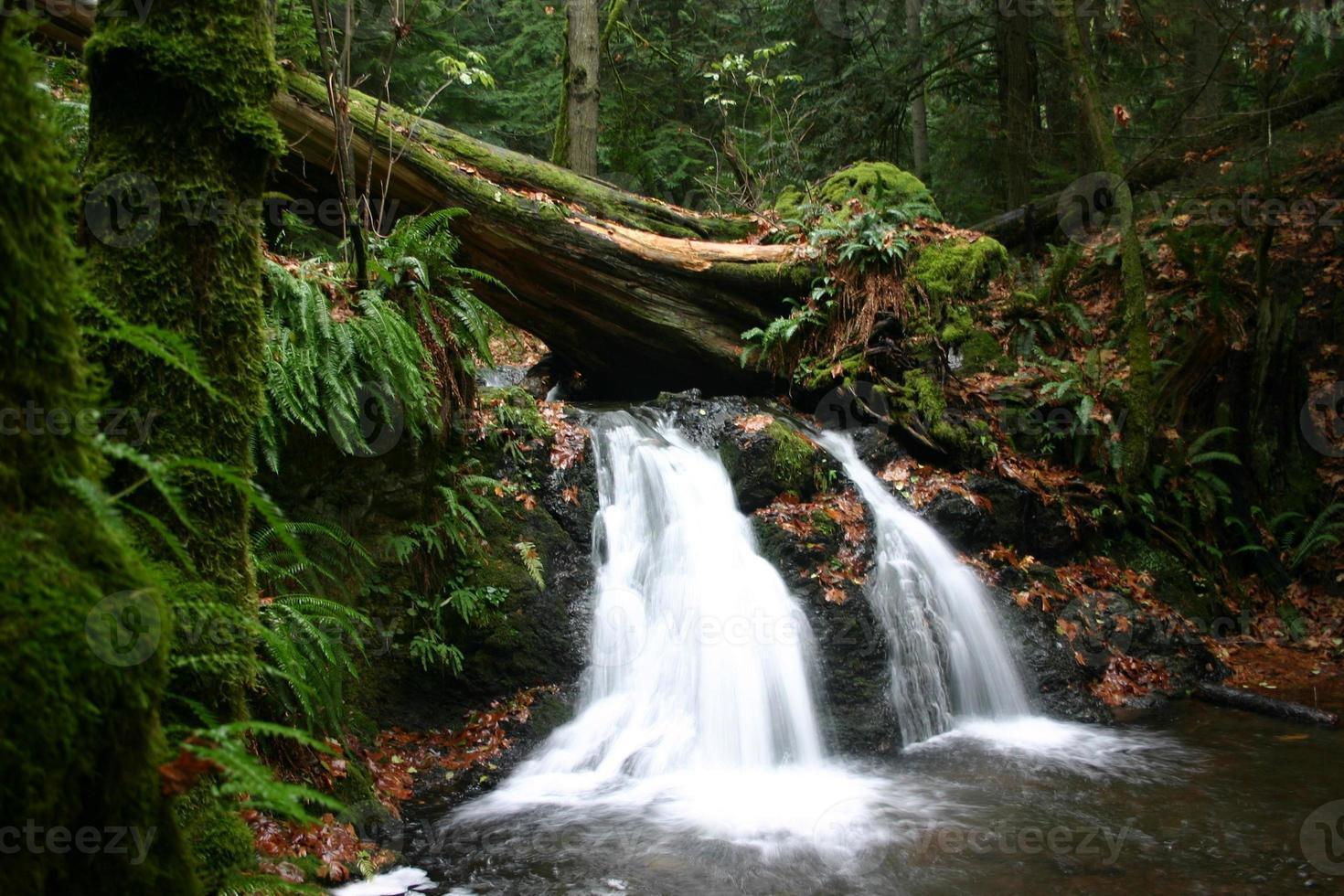 rustieke watervallen foto