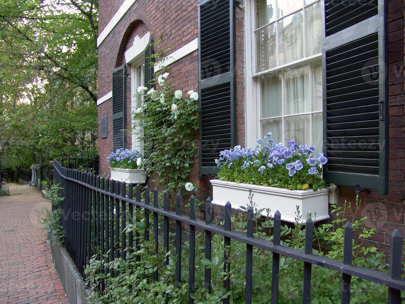Beacon Hill bloembakken foto