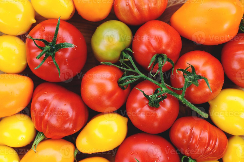 rijpe kleurrijke biologische tomaten foto