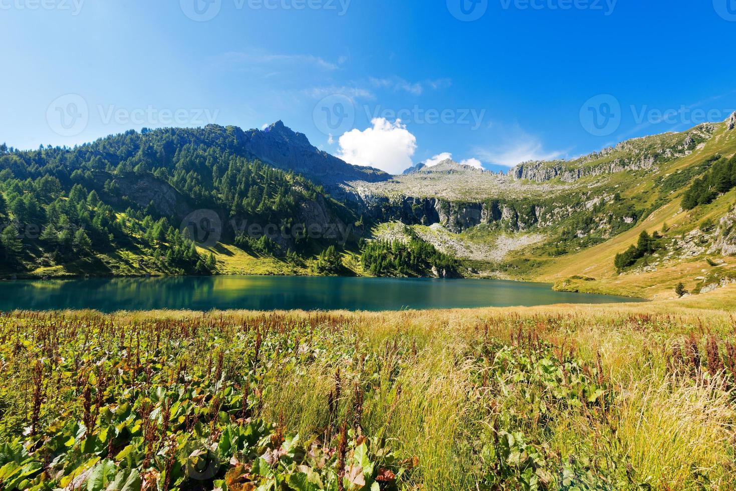 lago di campo - adamello trento italië foto