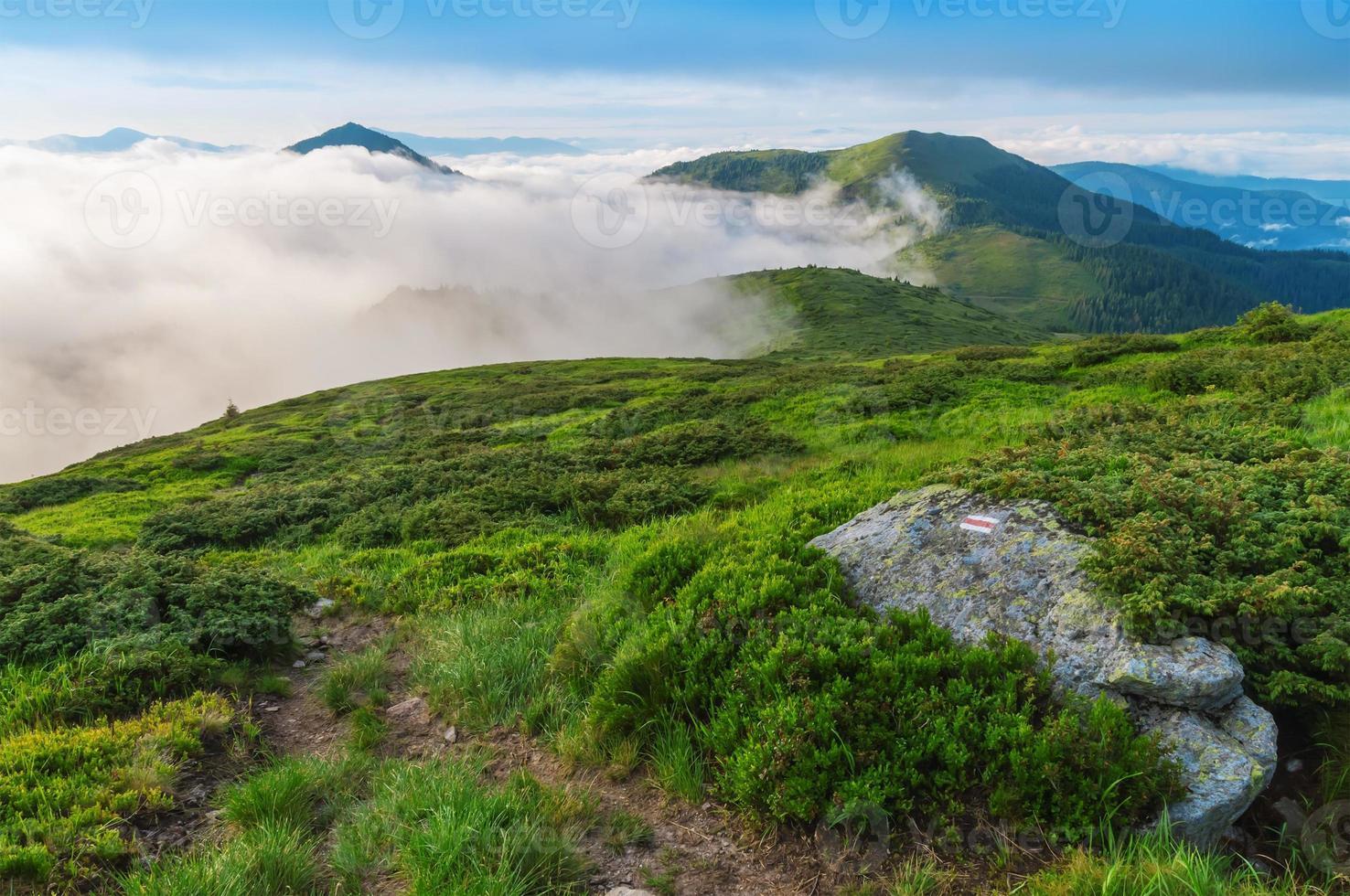 mist in de berg foto