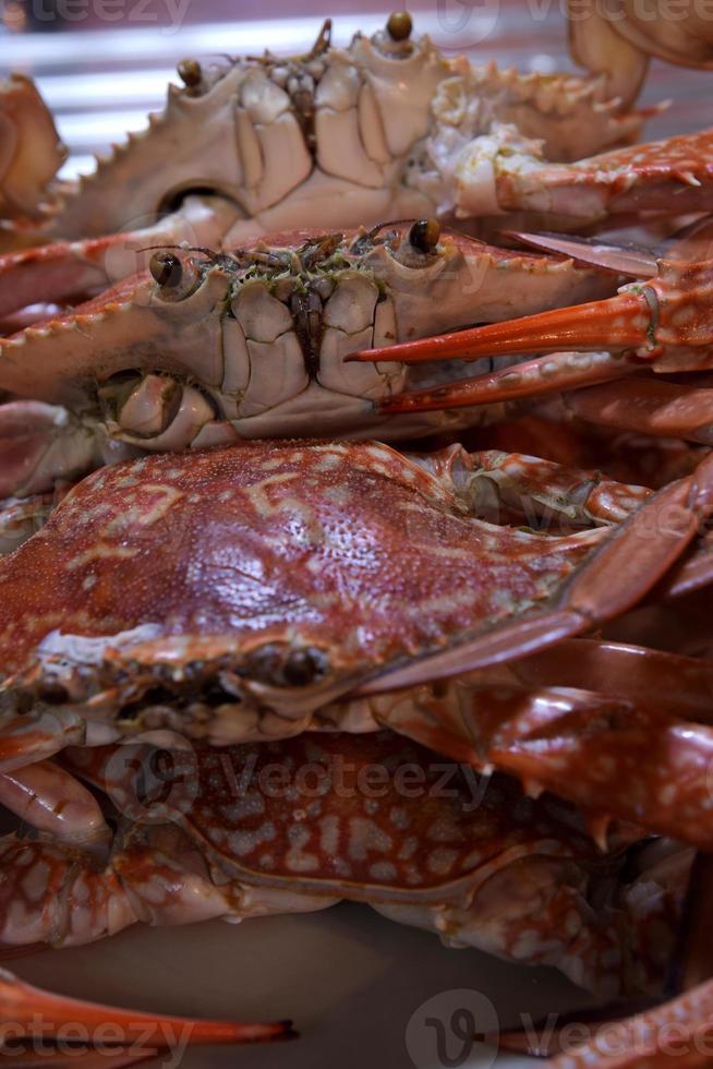 gekookte krabben, klaar om te koken voor Thaise krabcurry foto