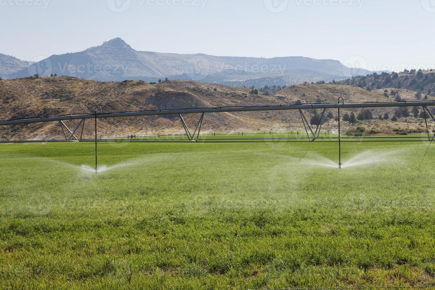 geautomatiseerde irrigatie foto