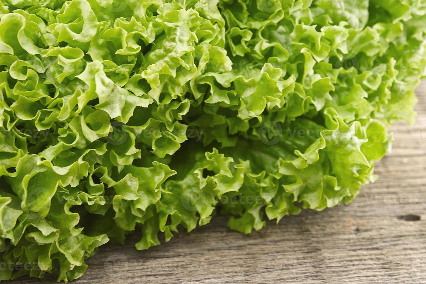 verse groene sla salat op houten achtergrond. gezond eten foto