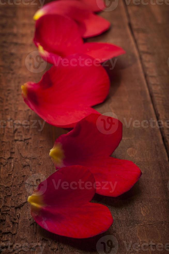 valentijn thema foto