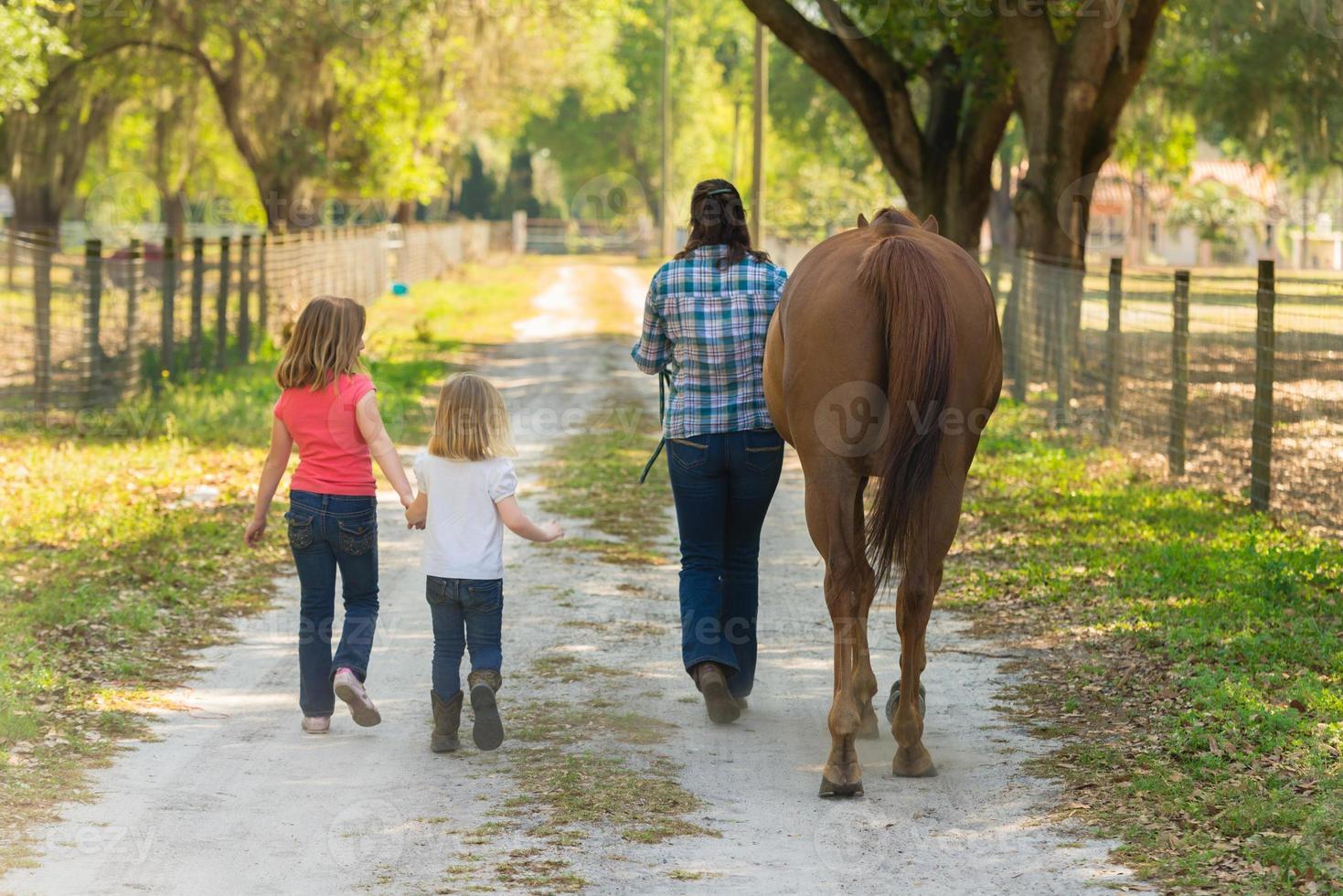 gezin met een paard foto