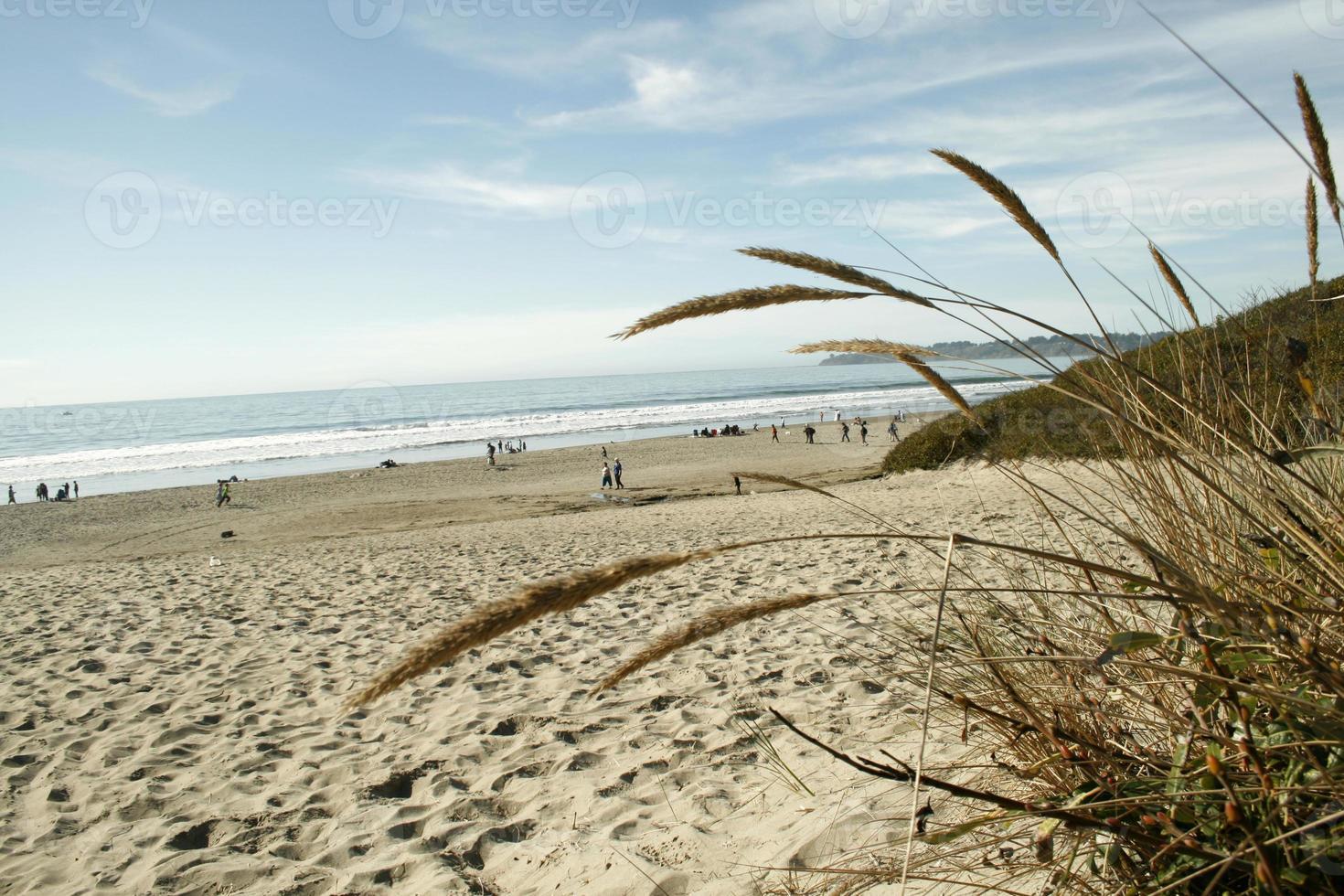 stinson beach - toerisme schot foto