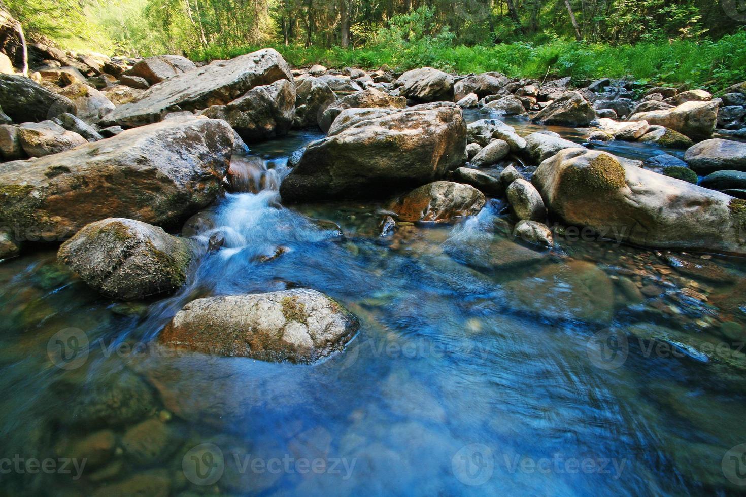 houten rivier foto