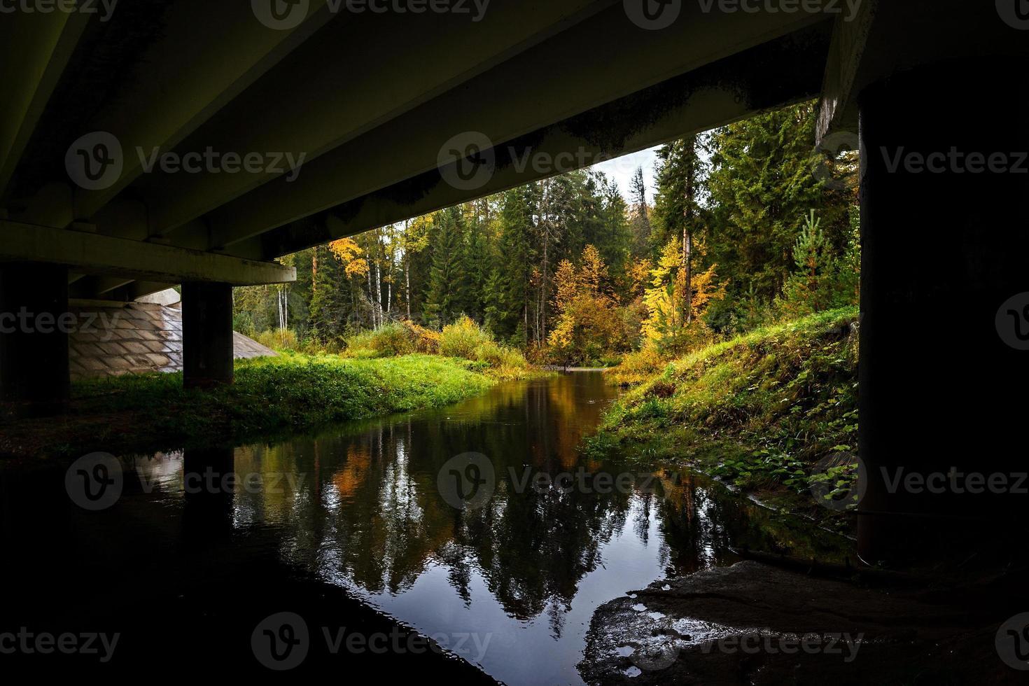 rivier in herfst bos. foto