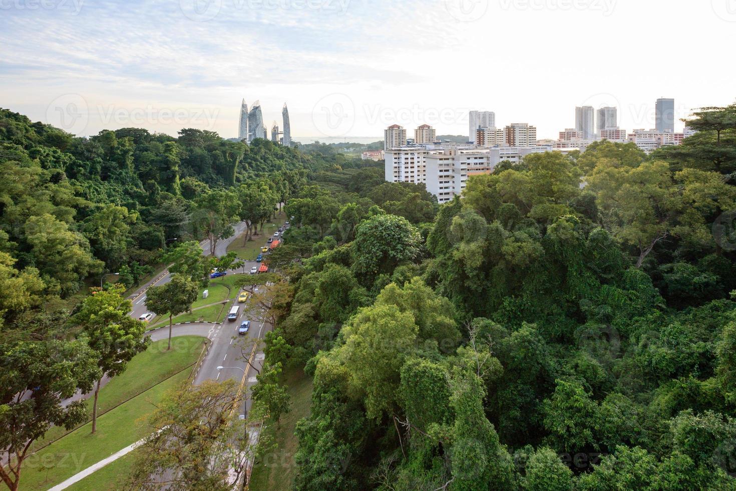 groene stad foto