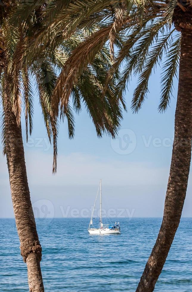 zomer op zee foto