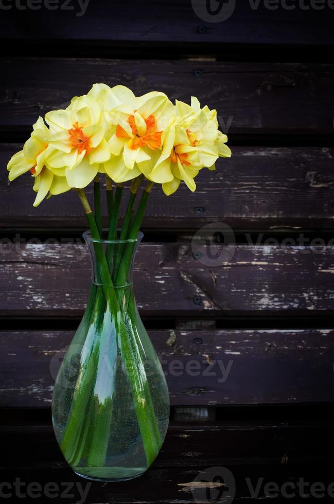 bloemen narcis foto