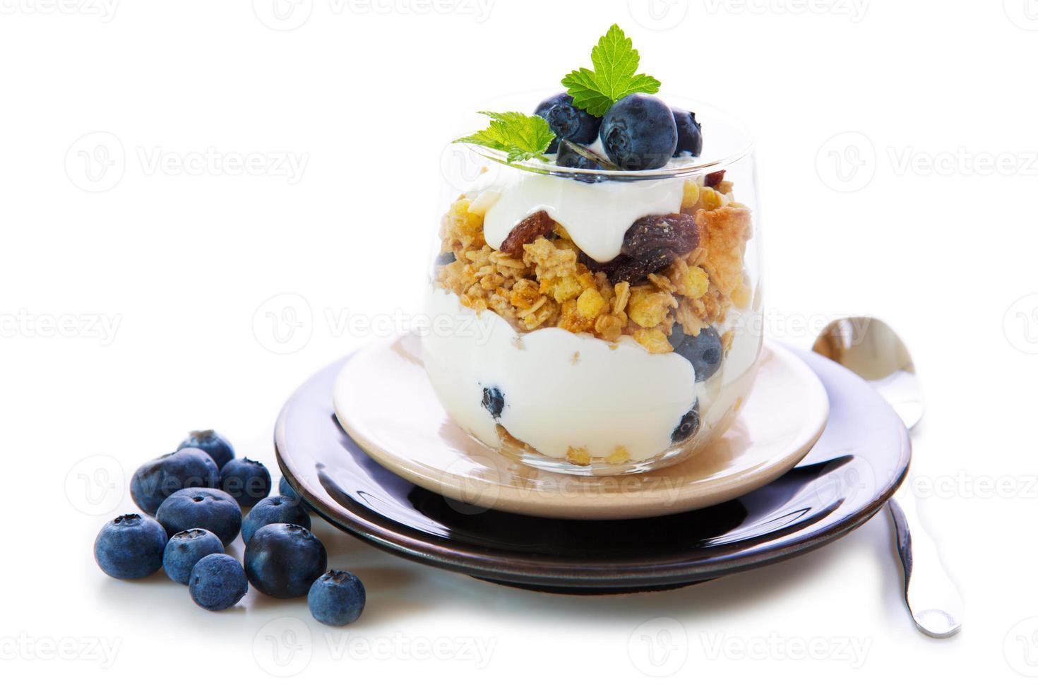 verse yoghurt met bosbessen. foto