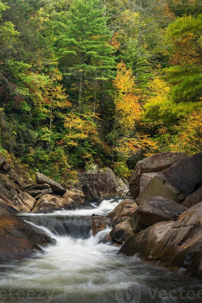 wilson creek herfst foto