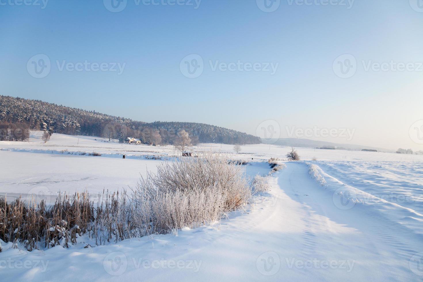 idyllisch winterlandschap in Thüringen foto