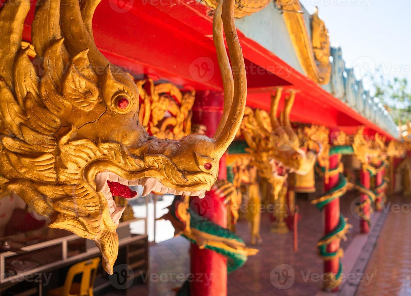 Aziatische draken foto