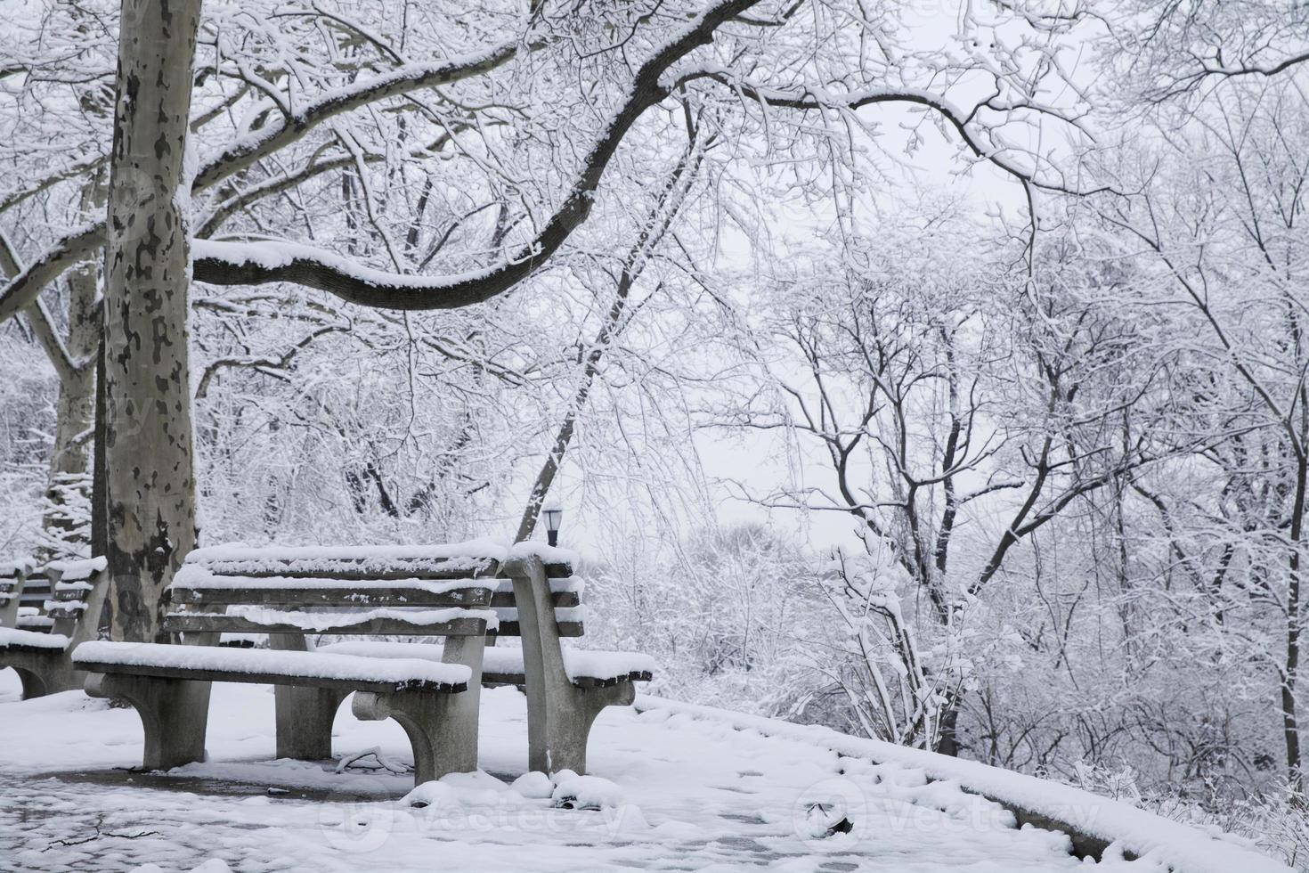 de winterscène in de stad van New York foto