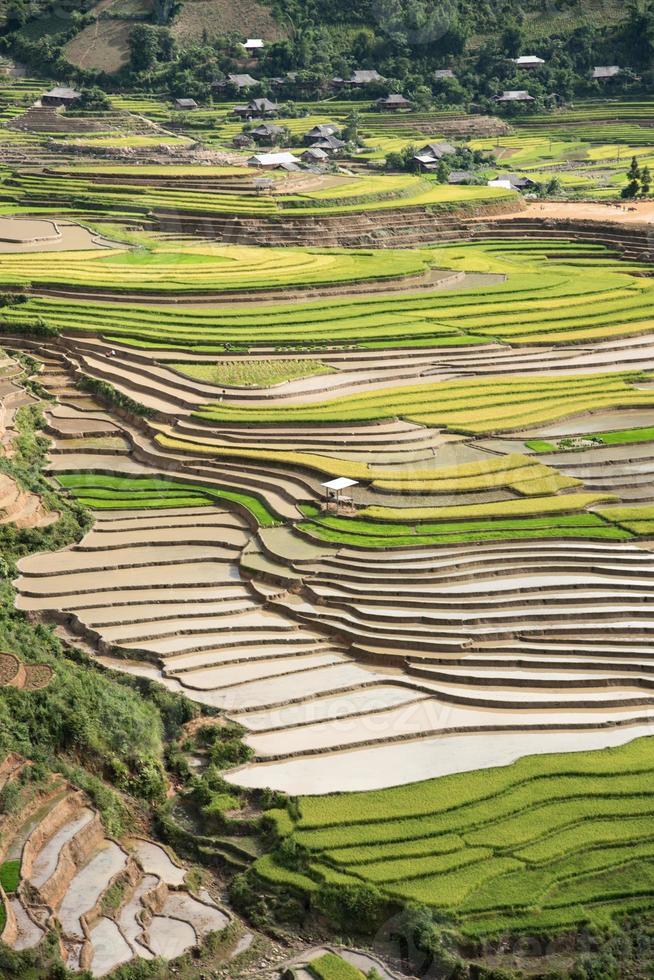 mooiste rijstterras in tule, mu cang chai, vietnam foto