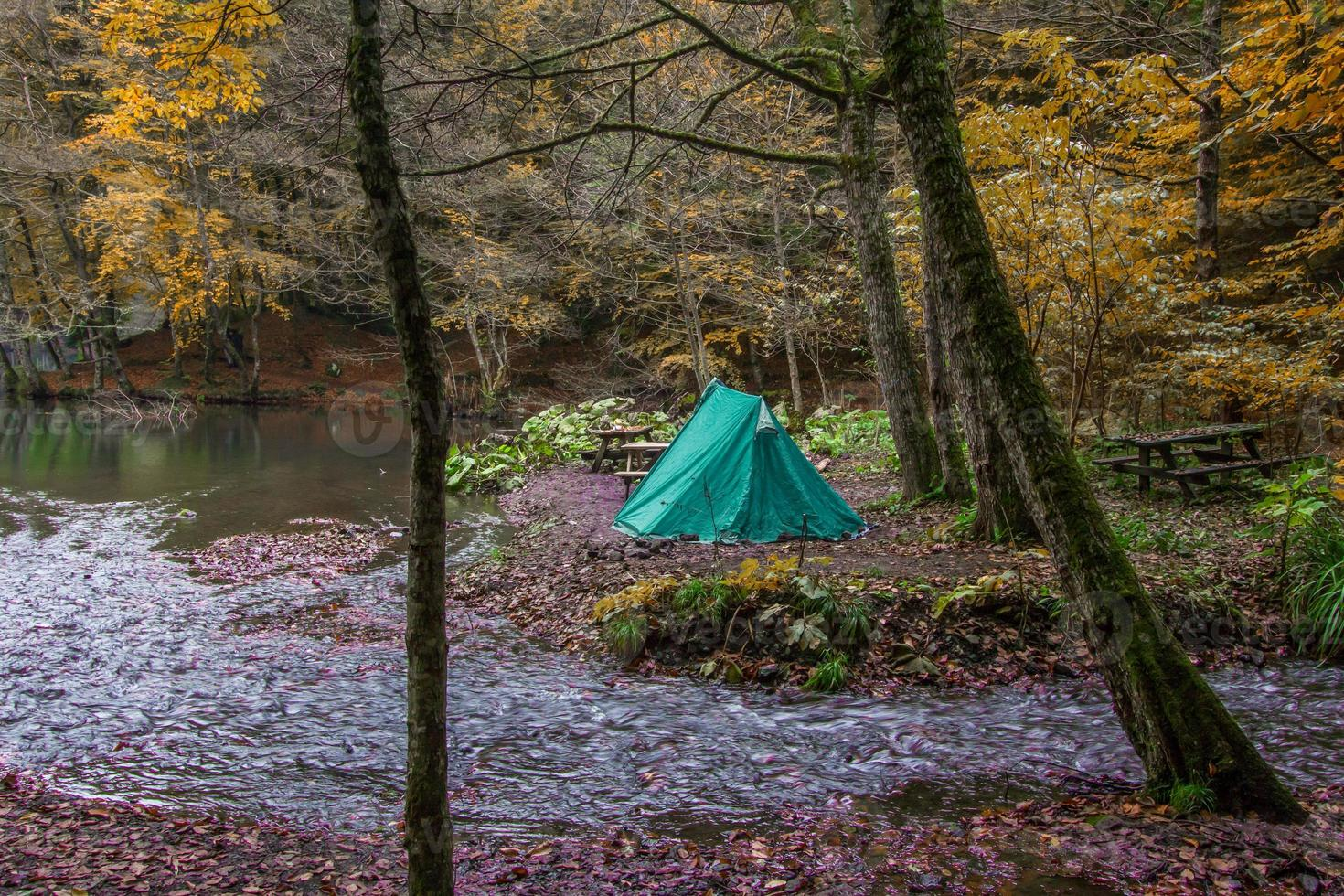 kamperen en natuur foto
