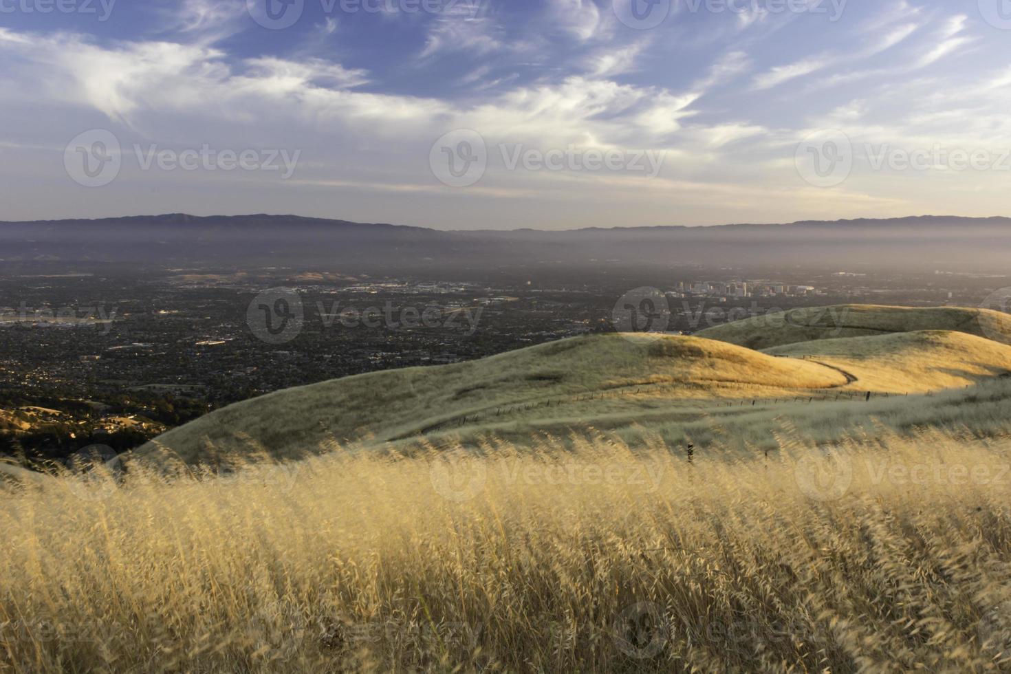 stedelijke wildgroei in de smog foto