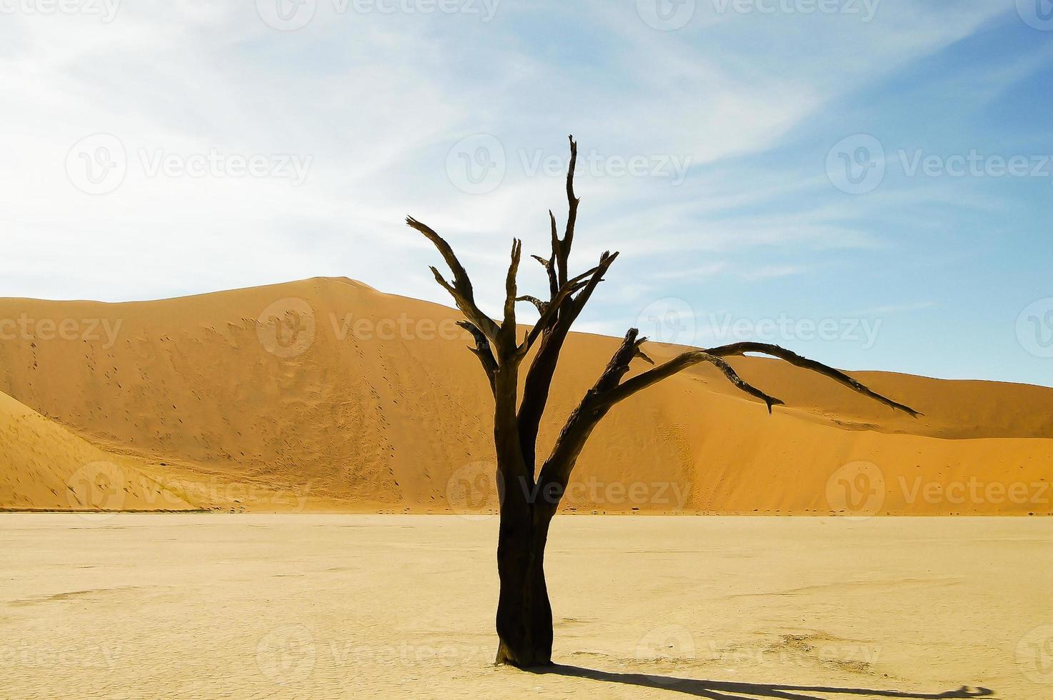 sossusvlei - Namibië foto