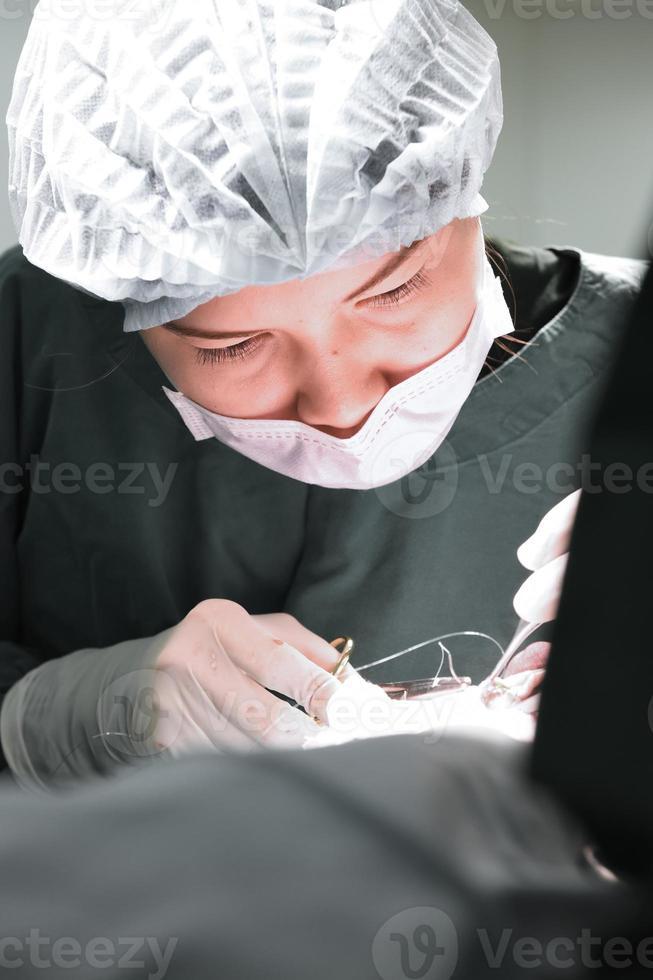 dierenarts in de operatiekamer foto