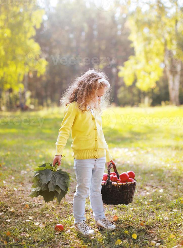 de mand van de kindholding met appelen die in de herfstbos lopen foto