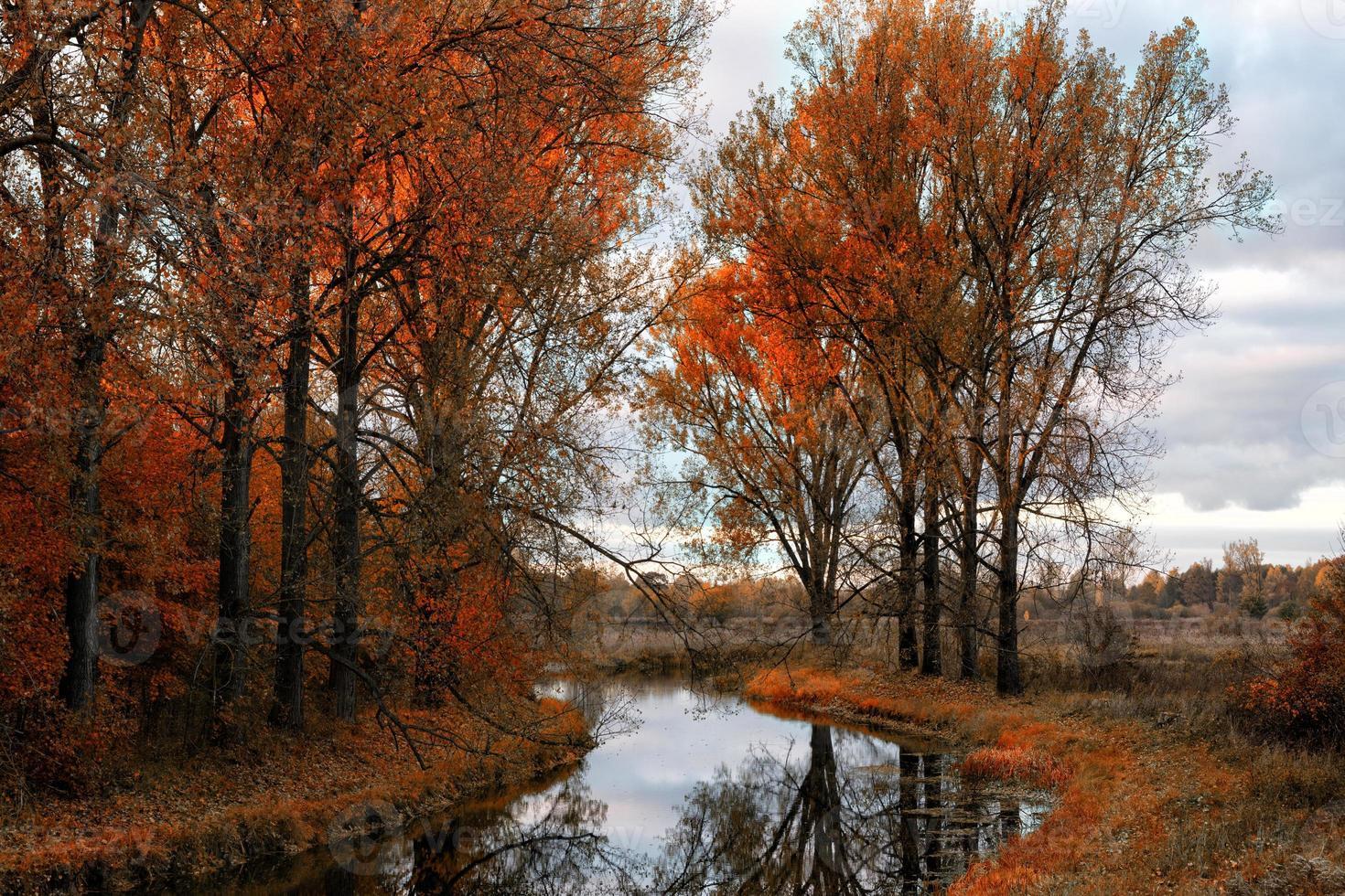 elandenrivier in de herfst 2 foto
