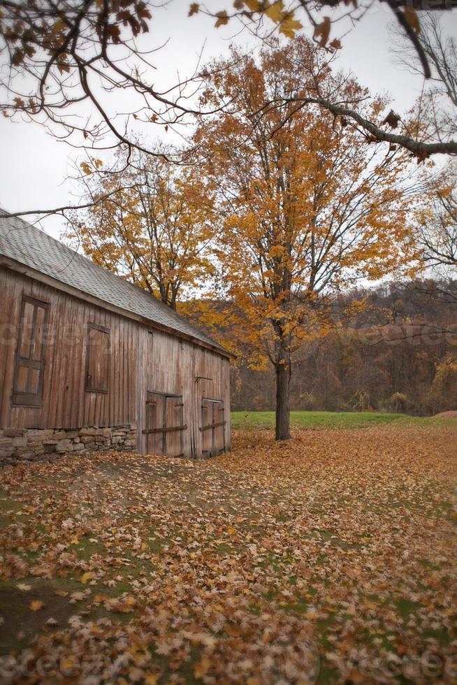 vallen op de boerderij foto