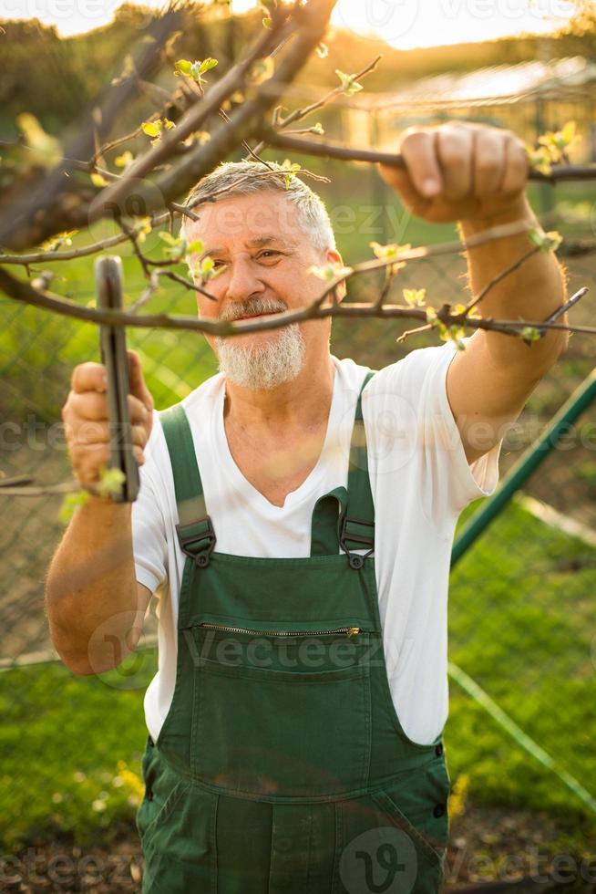 portret van een knappe senior man tuinieren foto
