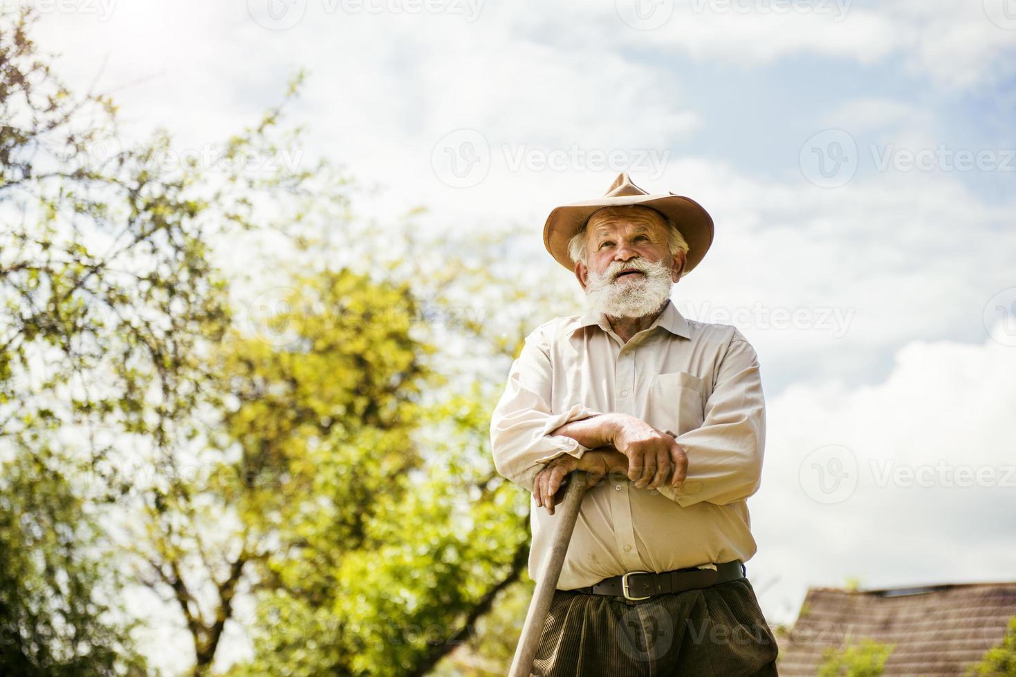 oude boer op de weide foto