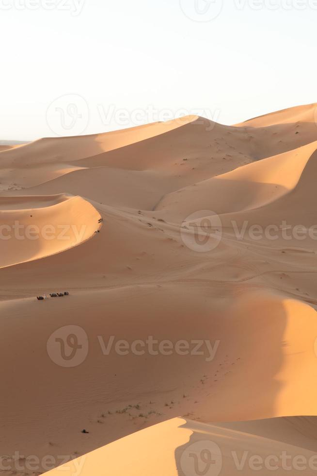 woestijn land foto