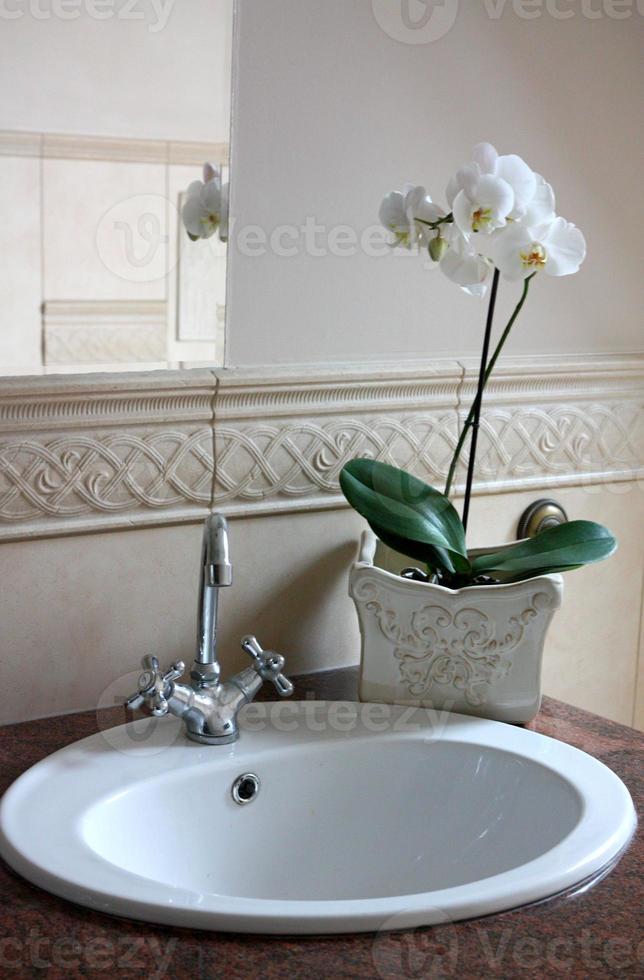 orchidee in de badkamer foto