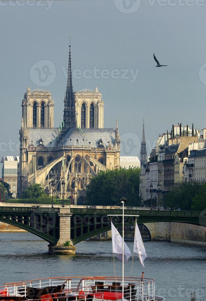 Notre Dame in Parijs, foto