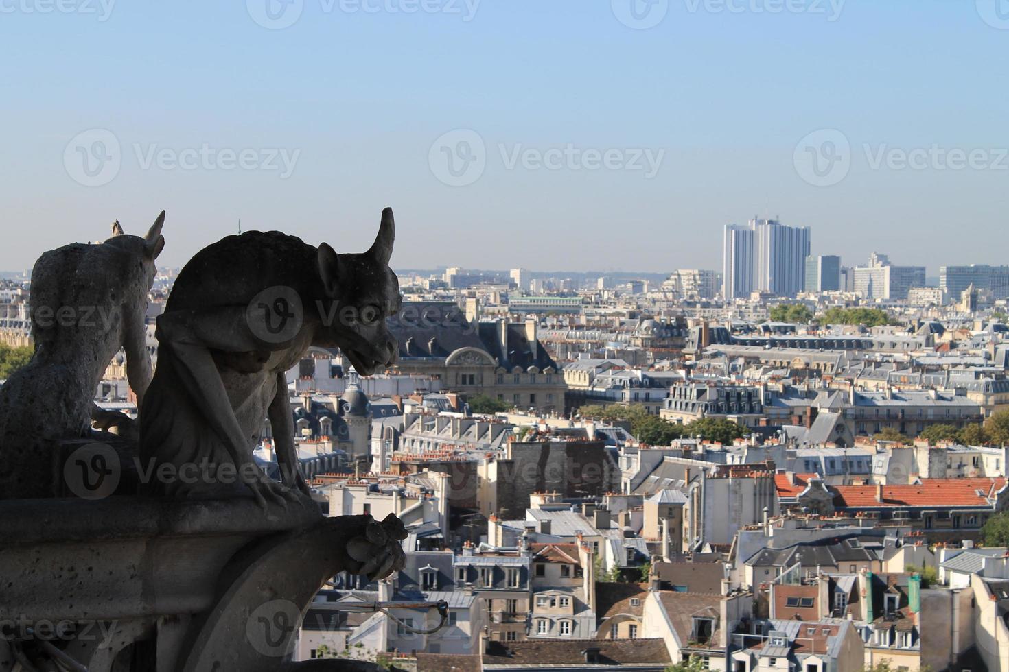 waterspuwers van Notre Dame de Paris foto