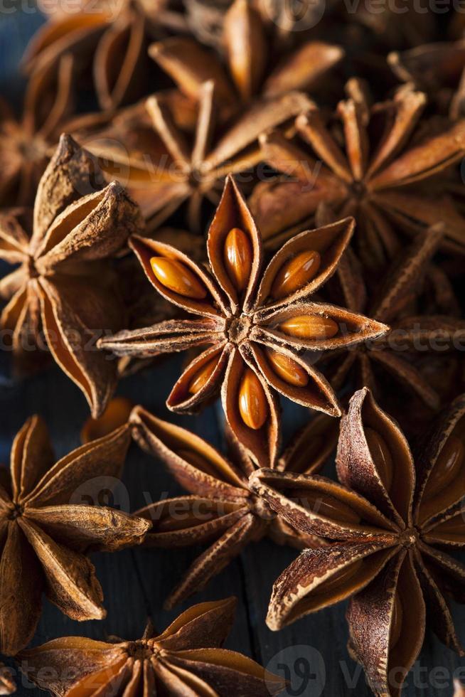 biologische droge ster van anijs foto