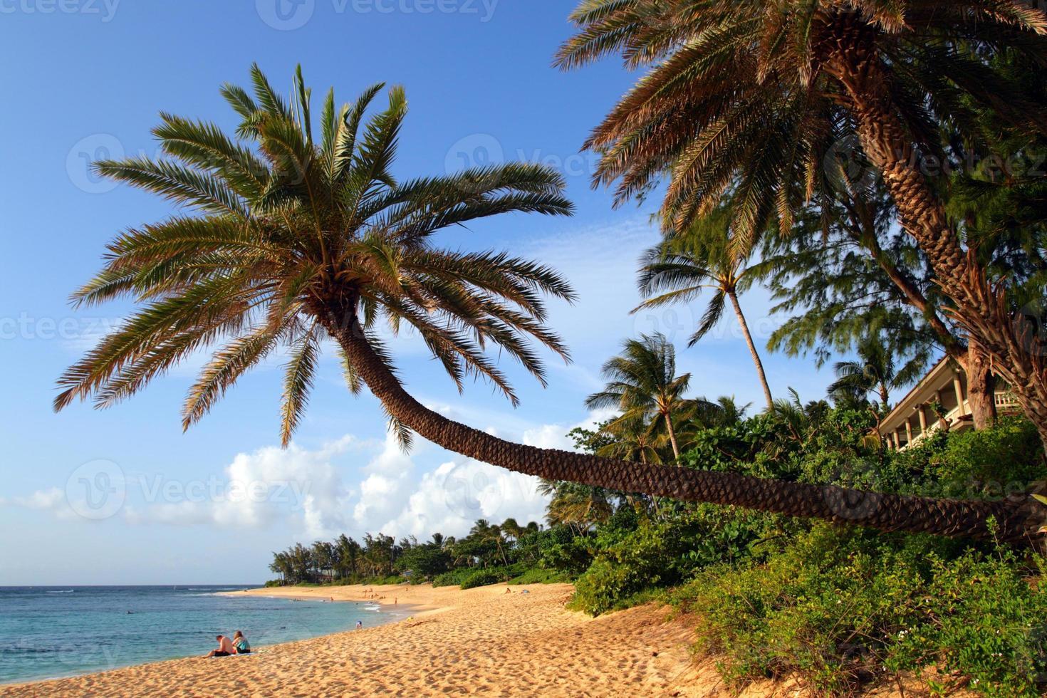 Sunset Beach, O'ahu, Hawaï foto