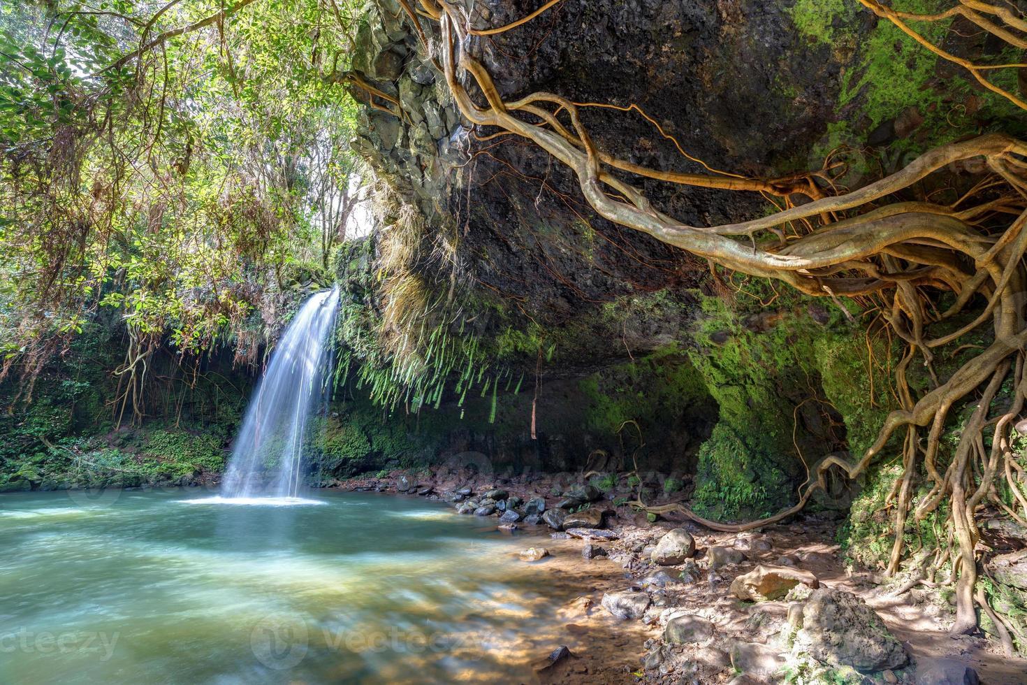 twin falls wildernis foto