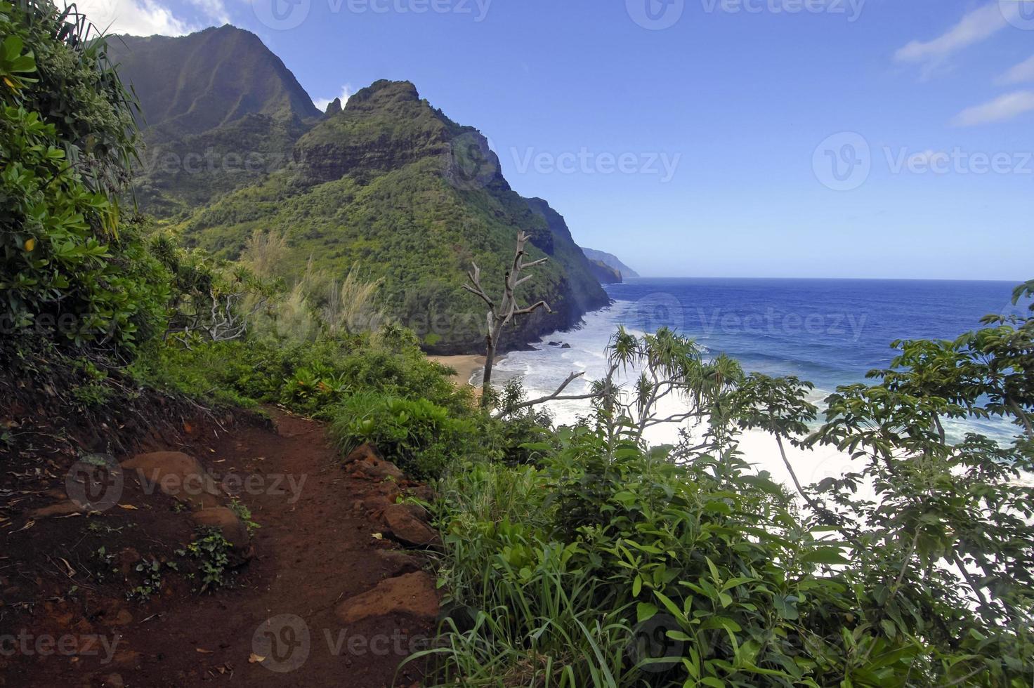 ruige kustlijn en kliffen van Kauai, Hawaï foto