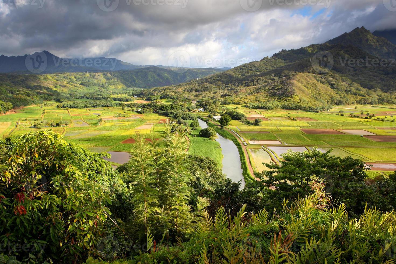 Hanalei Valley Lookout foto