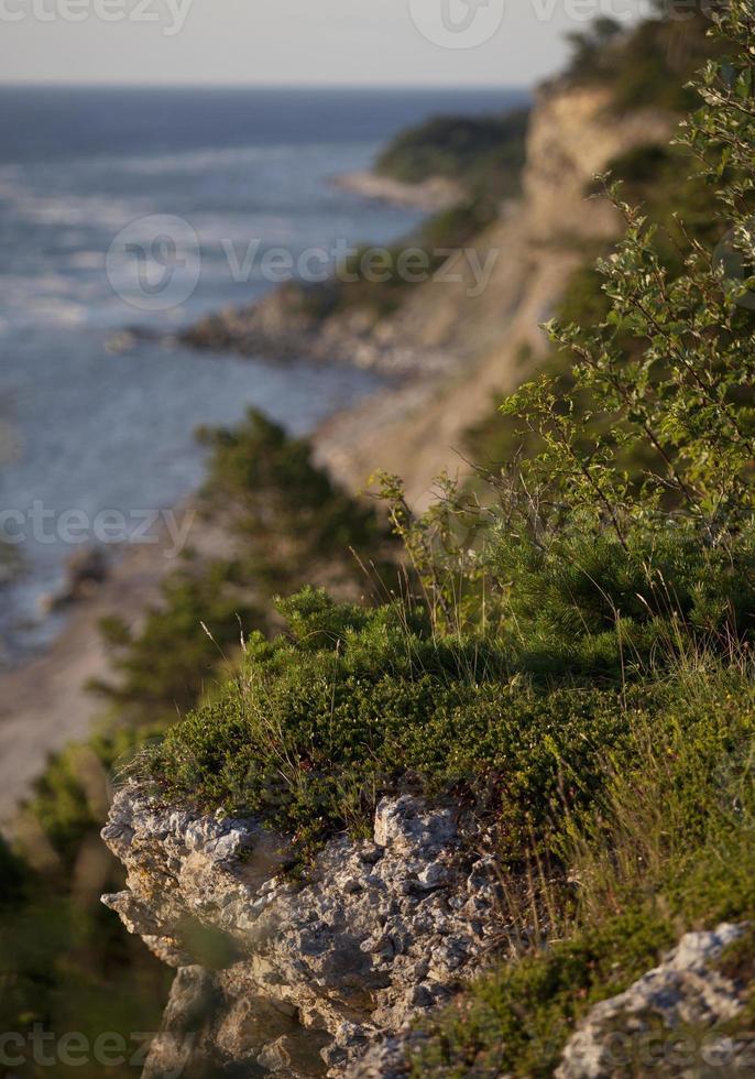 kustlijn op het eiland gotland.gn foto