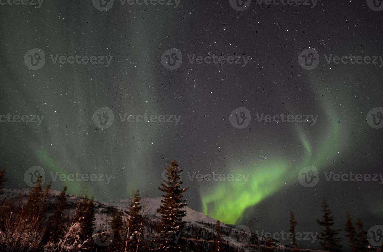 aurora borealis in Lapland / Zweden foto