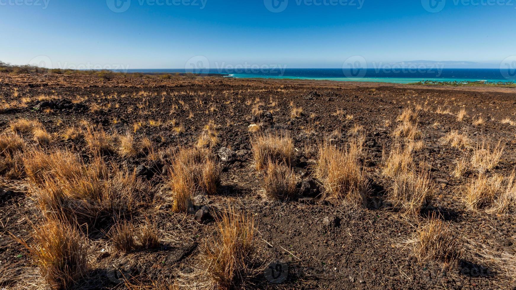 langs de kust op een groot eiland foto