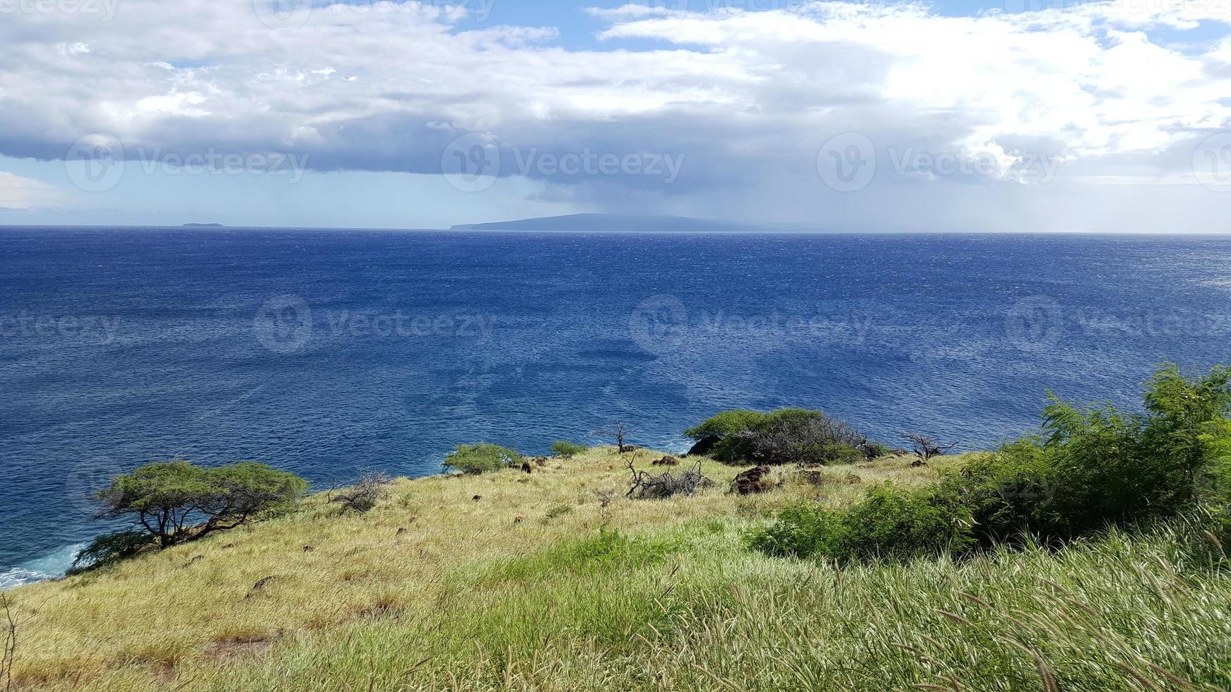 lahaina graslanden en kust foto